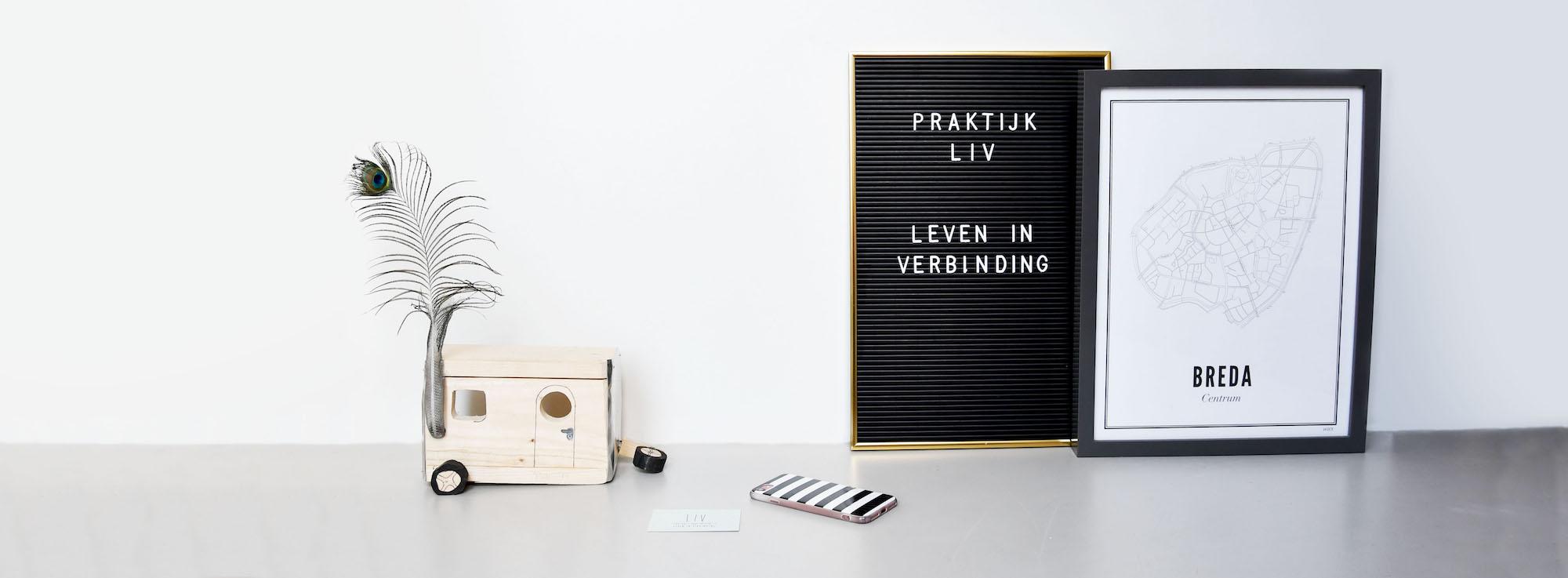 LIV-Breda-therapie-praktijkkind-jeugd-contact